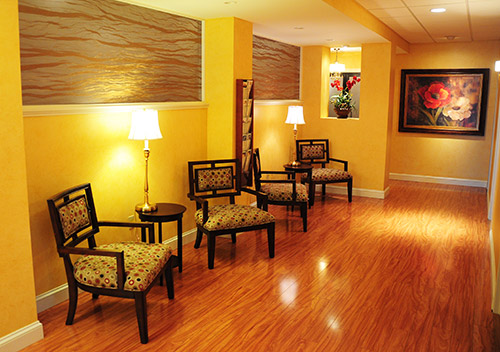 Rochester ny electrolysis luxe salon spa laser center for Luxe decor llp